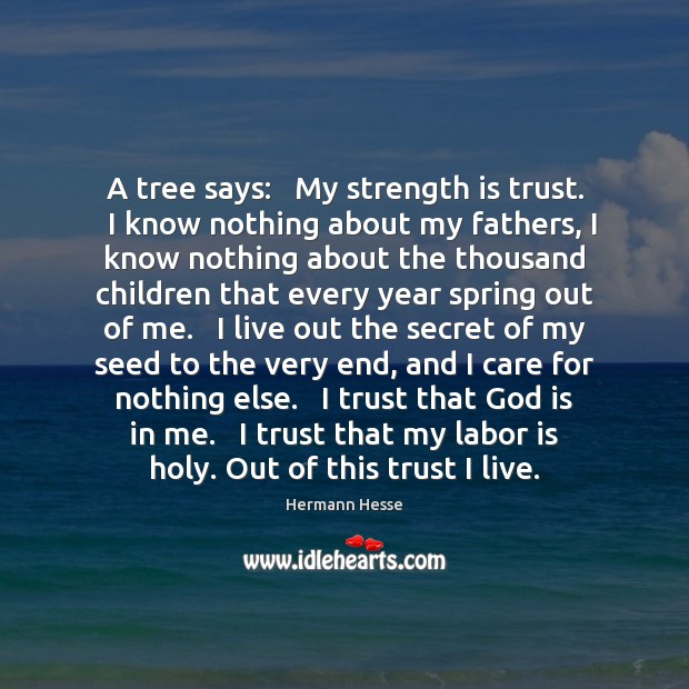 Image, A tree says:   My strength is trust.   I know nothing about my