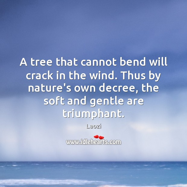 Image, A tree that cannot bend will crack in the wind. Thus by