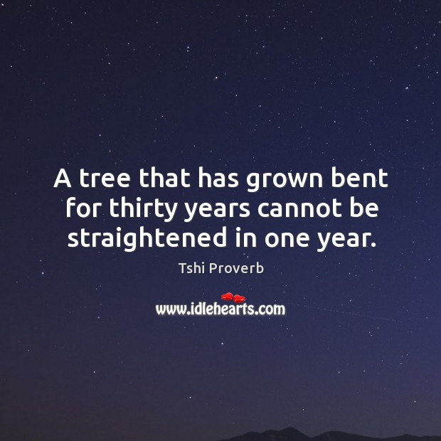 A tree that has grown bent for thirty years cannot be straightened in one year. Tshi Proverbs Image