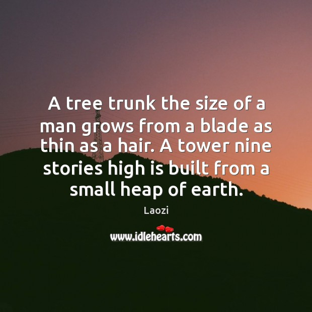 Image, A tree trunk the size of a man grows from a blade