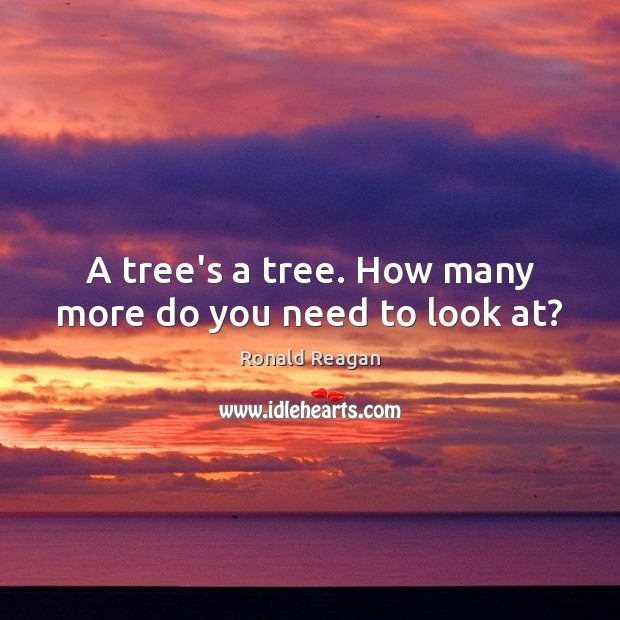 Image, A tree's a tree. How many more do you need to look at?