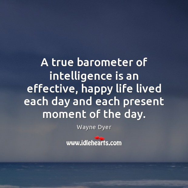 A true barometer of intelligence is an effective, happy life lived each Image