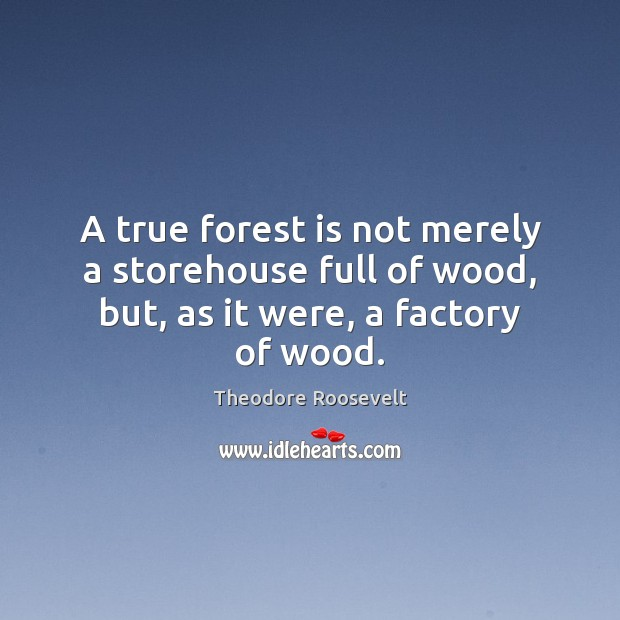A true forest is not merely a storehouse full of wood, but, as it were, a factory of wood. Theodore Roosevelt Picture Quote