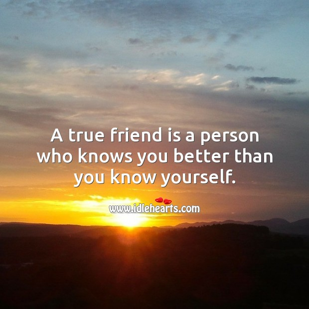 A true friend is a person who knows you better than you know yourself. Image