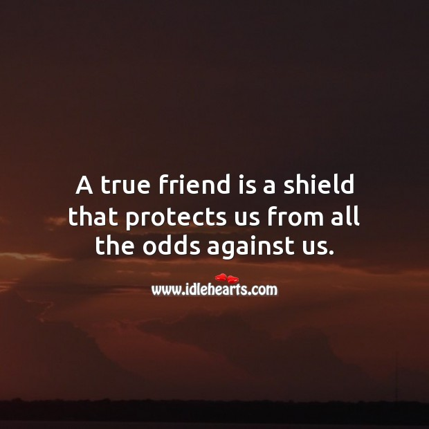A true friend is a shield that protects us from all the odds against us. True Friends Quotes Image