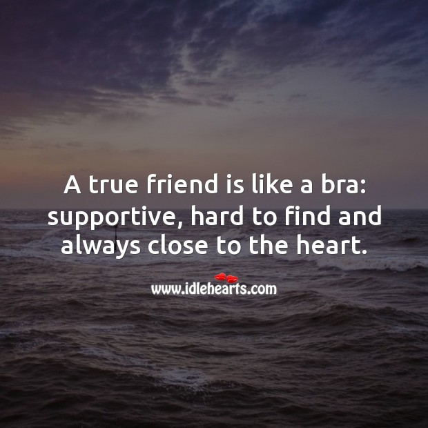 Image, A true friend is like a bra.