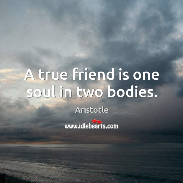 Image, A true friend is one soul in two bodies.