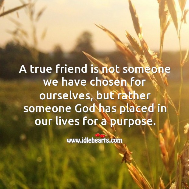 Image, A true friend is someone God has placed in our lives for a purpose.