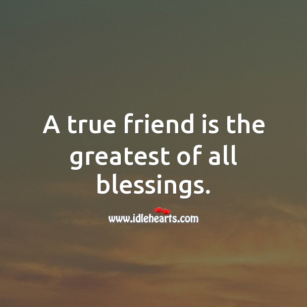 Image, A true friend is the greatest of all blessings.
