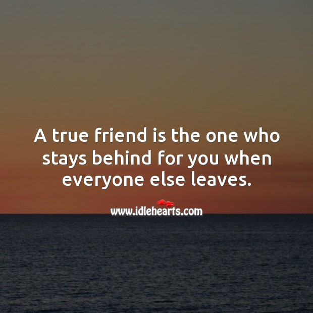 A true friend is the one who stays behind for you when everyone else leaves. True Friends Quotes Image