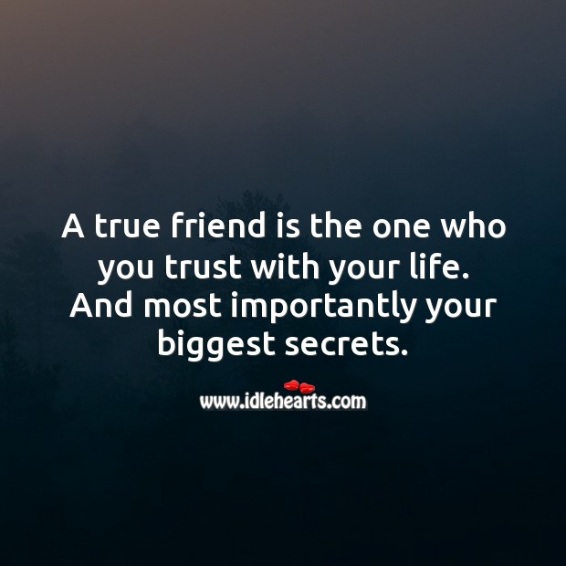 A true friend is the one who you trust with your life. And your biggest secrets. True Friends Quotes Image