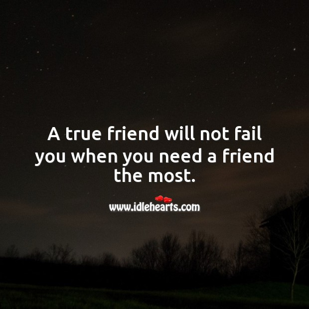 Image, A true friend will not fail you when you need a friend the most.