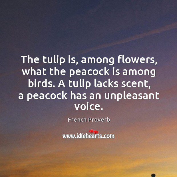 A tulip lacks scent, a peacock has an unpleasant voice. French Proverbs Image