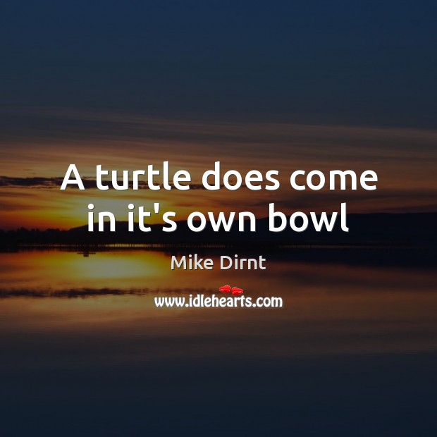 A turtle does come in it's own bowl Mike Dirnt Picture Quote