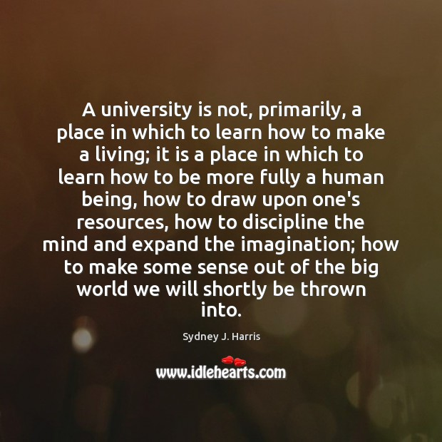 A university is not, primarily, a place in which to learn how Image