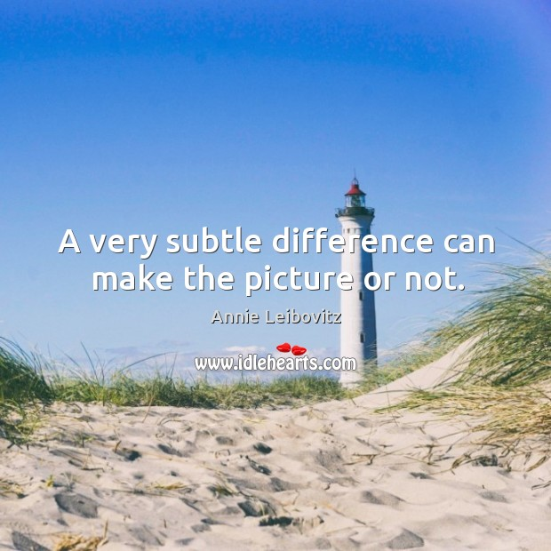 A very subtle difference can make the picture or not. Annie Leibovitz Picture Quote