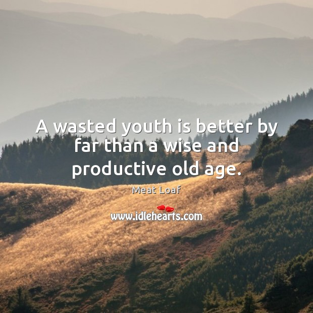 A wasted youth is better by far than a wise and productive old age. Image