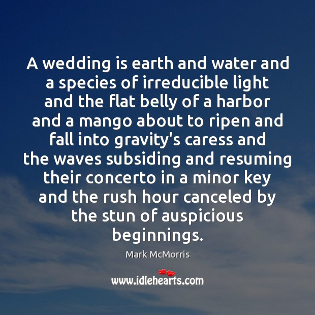 A wedding is earth and water and a species of irreducible light Wedding Quotes Image