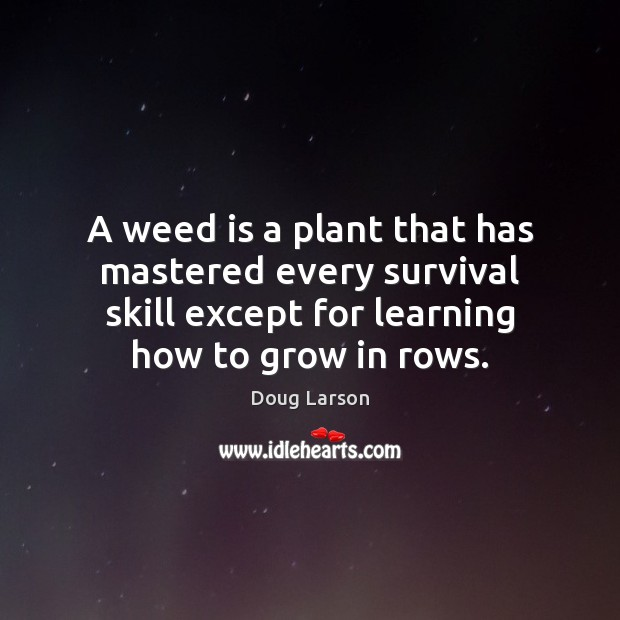 A weed is a plant that has mastered every survival skill except Doug Larson Picture Quote