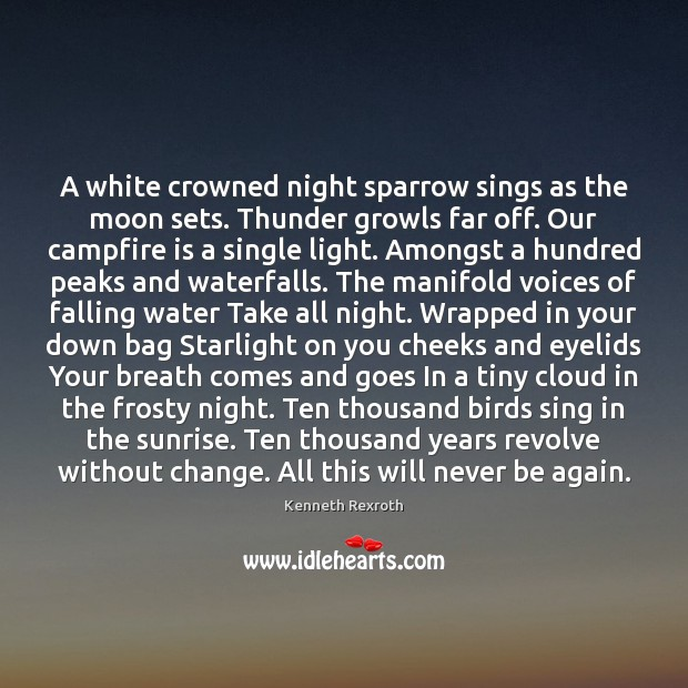 Image, A white crowned night sparrow sings as the moon sets. Thunder growls