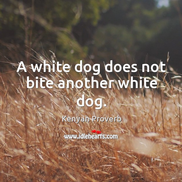 A white dog does not bite another white dog. Kenyan Proverbs Image