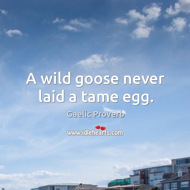 Gaelic Proverbs