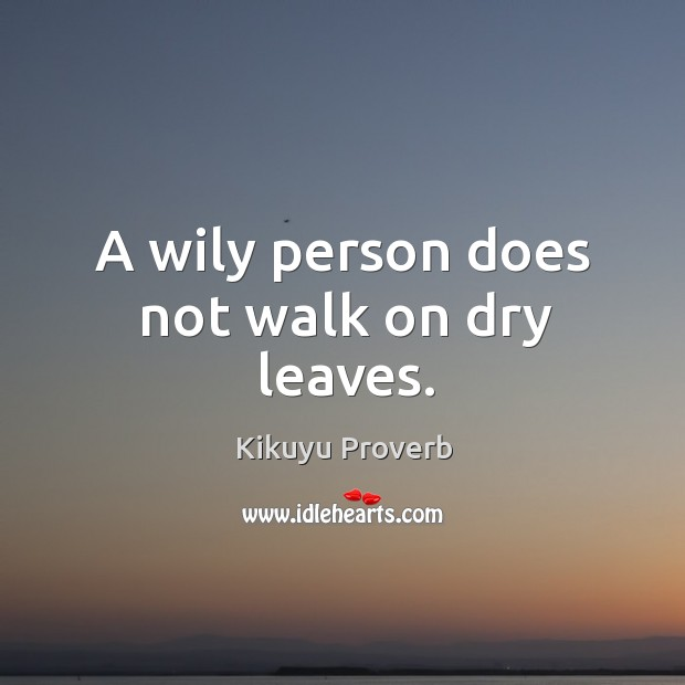 A wily person does not walk on dry leaves. Image