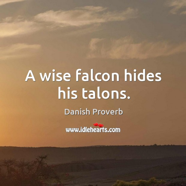 A wise falcon hides his talons. Image