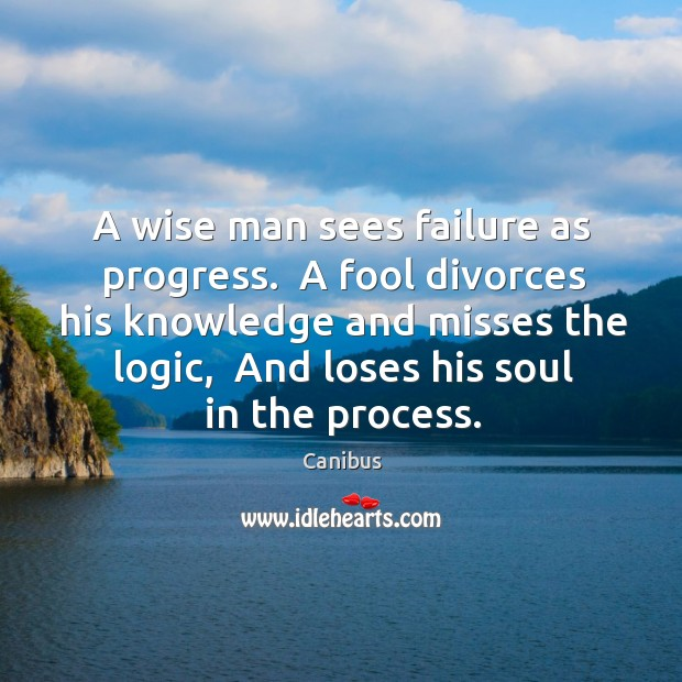 Image, A wise man sees failure as progress.  A fool divorces his knowledge
