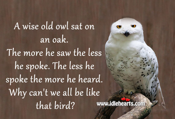 Wise old owl sat on an oak the more he saw the less he spoke the