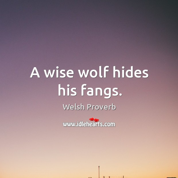 A wise wolf hides his fangs. Welsh Proverbs Image