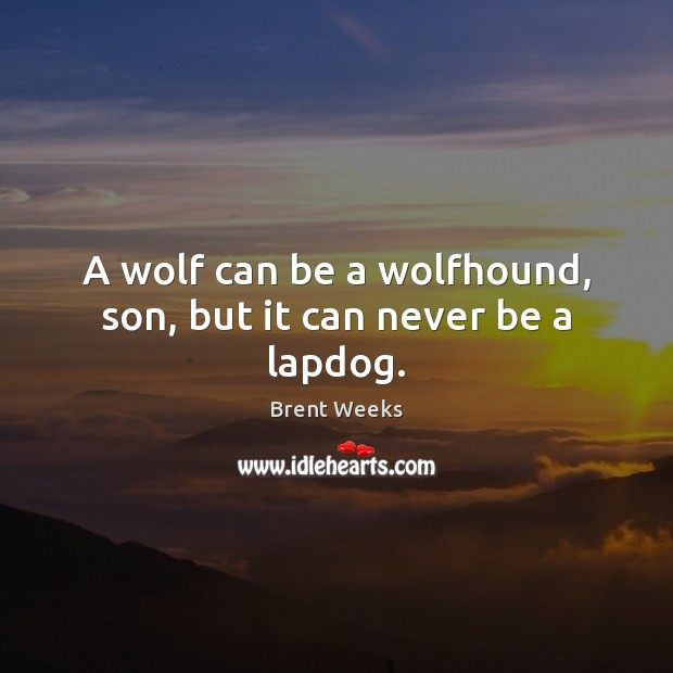 Image, A wolf can be a wolfhound, son, but it can never be a lapdog.