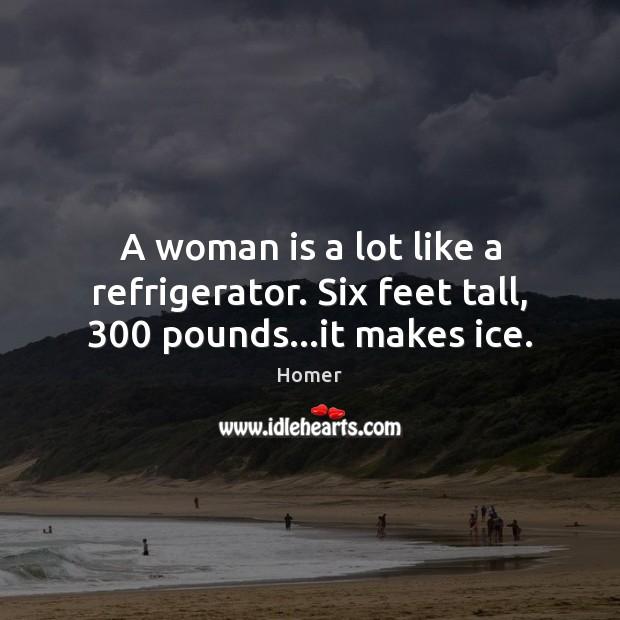 Image, A woman is a lot like a refrigerator. Six feet tall, 300 pounds…it makes ice.