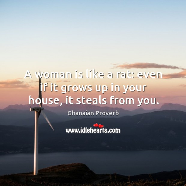 A woman is like a rat: even if it grows up in your house, it steals from you. Ghanaian Proverbs Image