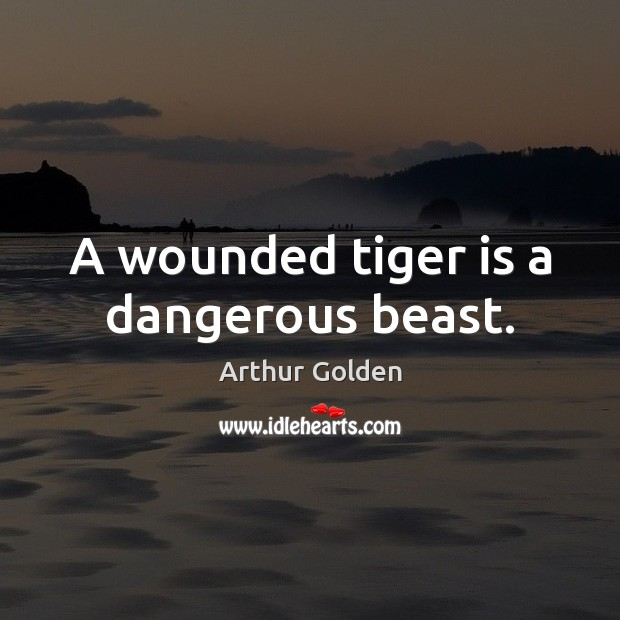 A wounded tiger is a dangerous beast. Arthur Golden Picture Quote