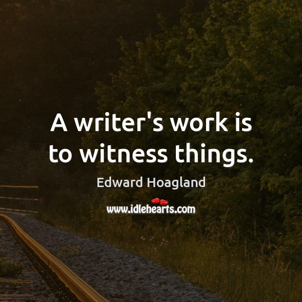 A writer's work is to witness things. Image