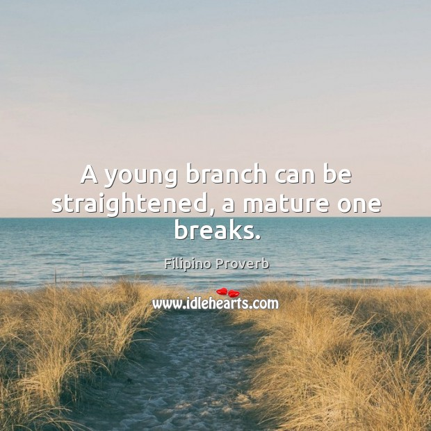 A young branch can be straightened, a mature one breaks. Filipino Proverbs Image