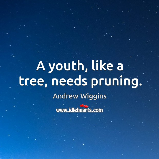 A youth, like a tree, needs pruning. Image