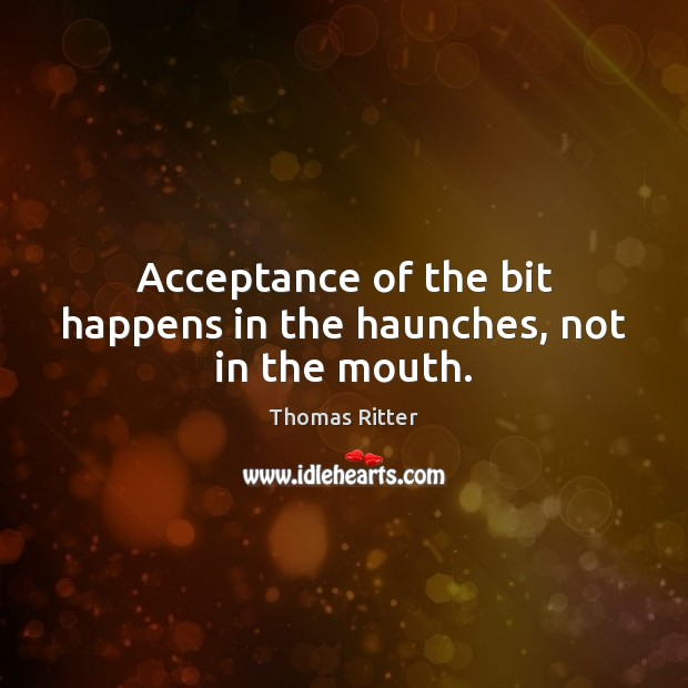 Acceptance of the bit happens in the haunches, not in the mouth. Image