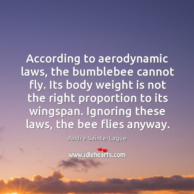 Image, According to aerodynamic laws, the bumblebee cannot fly. Its body weight is