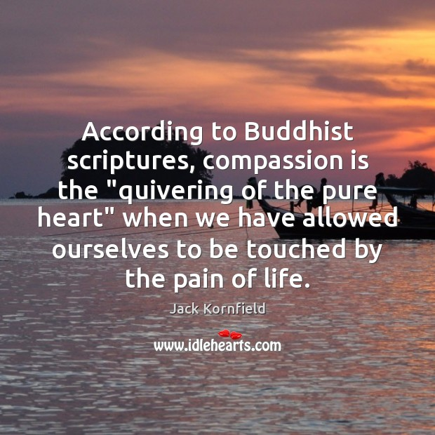 "According to Buddhist scriptures, compassion is the ""quivering of the pure heart"" Jack Kornfield Picture Quote"