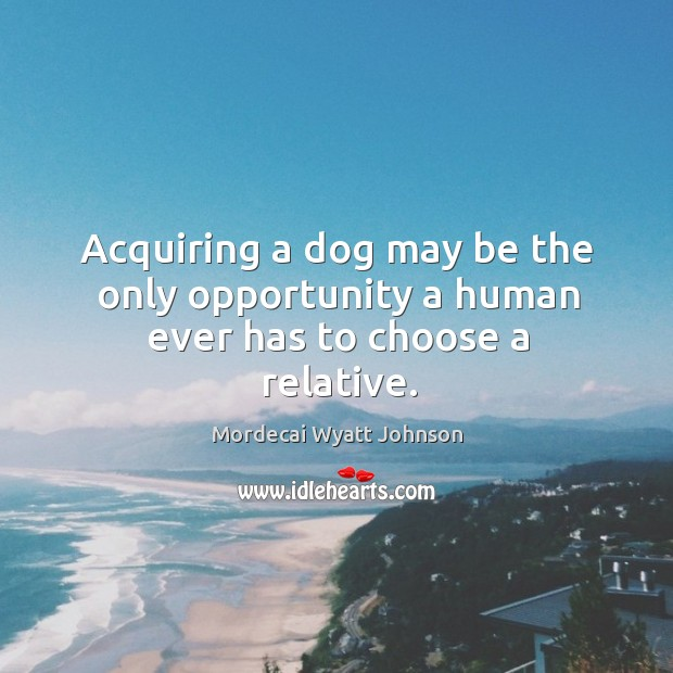 Acquiring a dog may be the only opportunity a human ever has to choose a relative. Mordecai Wyatt Johnson Picture Quote