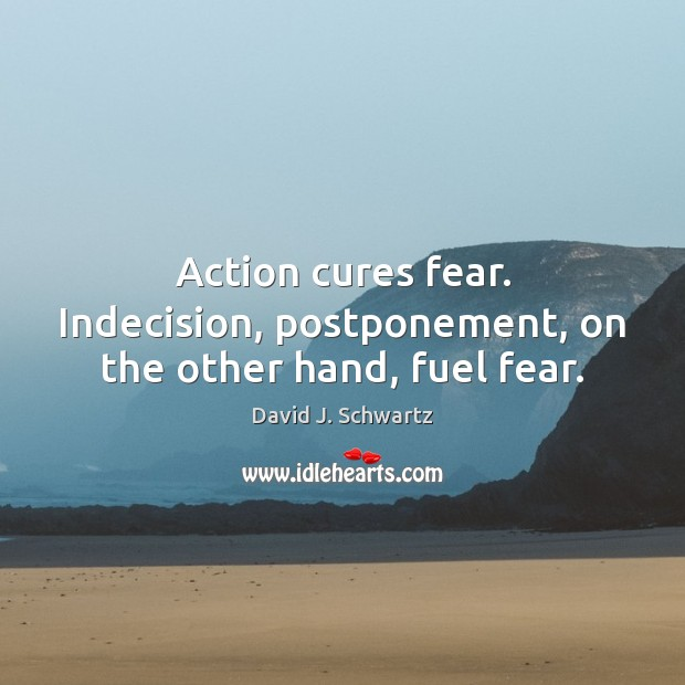 Action cures fear. Indecision, postponement, on the other hand, fuel fear. David J. Schwartz Picture Quote