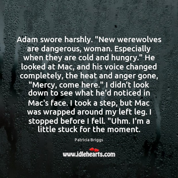 """Adam swore harshly. """"New werewolves are dangerous, woman. Especially when they are Image"""