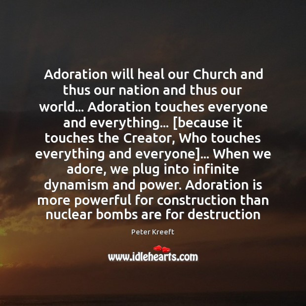 Adoration will heal our Church and thus our nation and thus our Image
