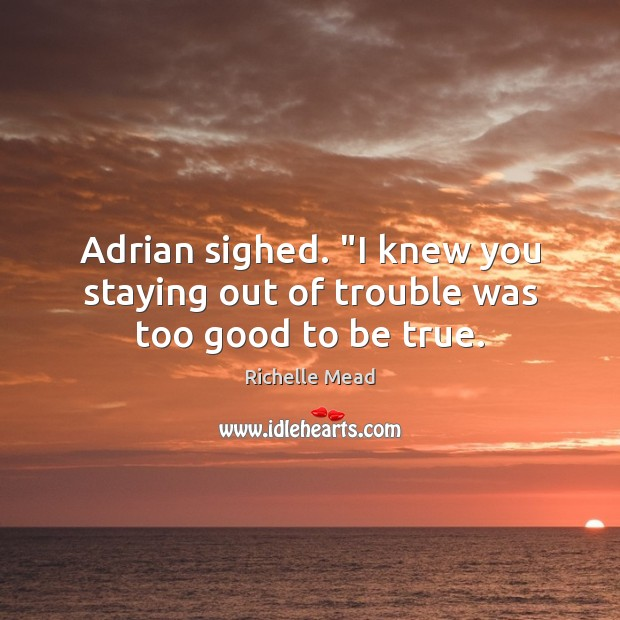 """Adrian sighed. """"I knew you staying out of trouble was too good to be true. Too Good To Be True Quotes Image"""