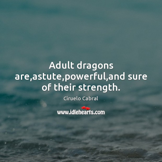 Image, Adult dragons are,astute,powerful,and sure of their strength.