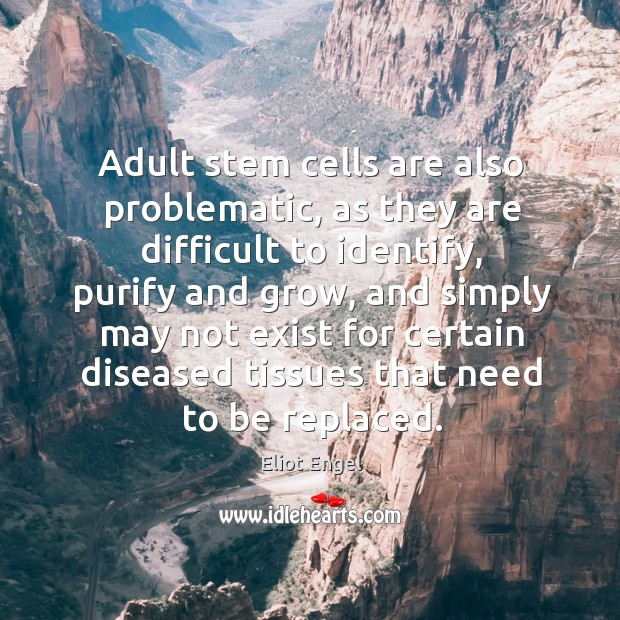 Image, Adult stem cells are also problematic, as they are difficult to identify, purify and grow