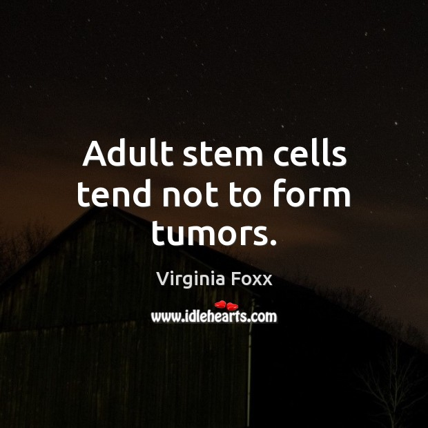 Image, Adult stem cells tend not to form tumors.