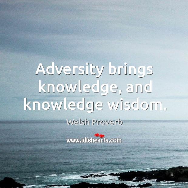 Image, Adversity brings knowledge, and knowledge wisdom.